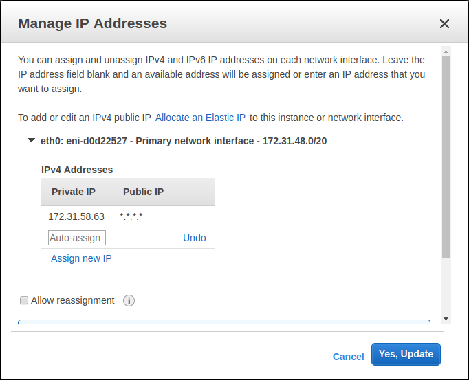 "AWS EC2 - Instances - ""Manage IP Addresses"" Dialog"